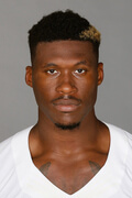 Photo of David Irving